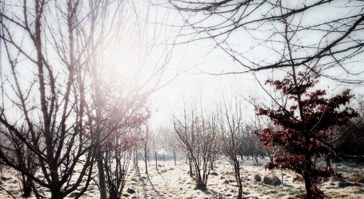 Energiewende macht keine Winterpause